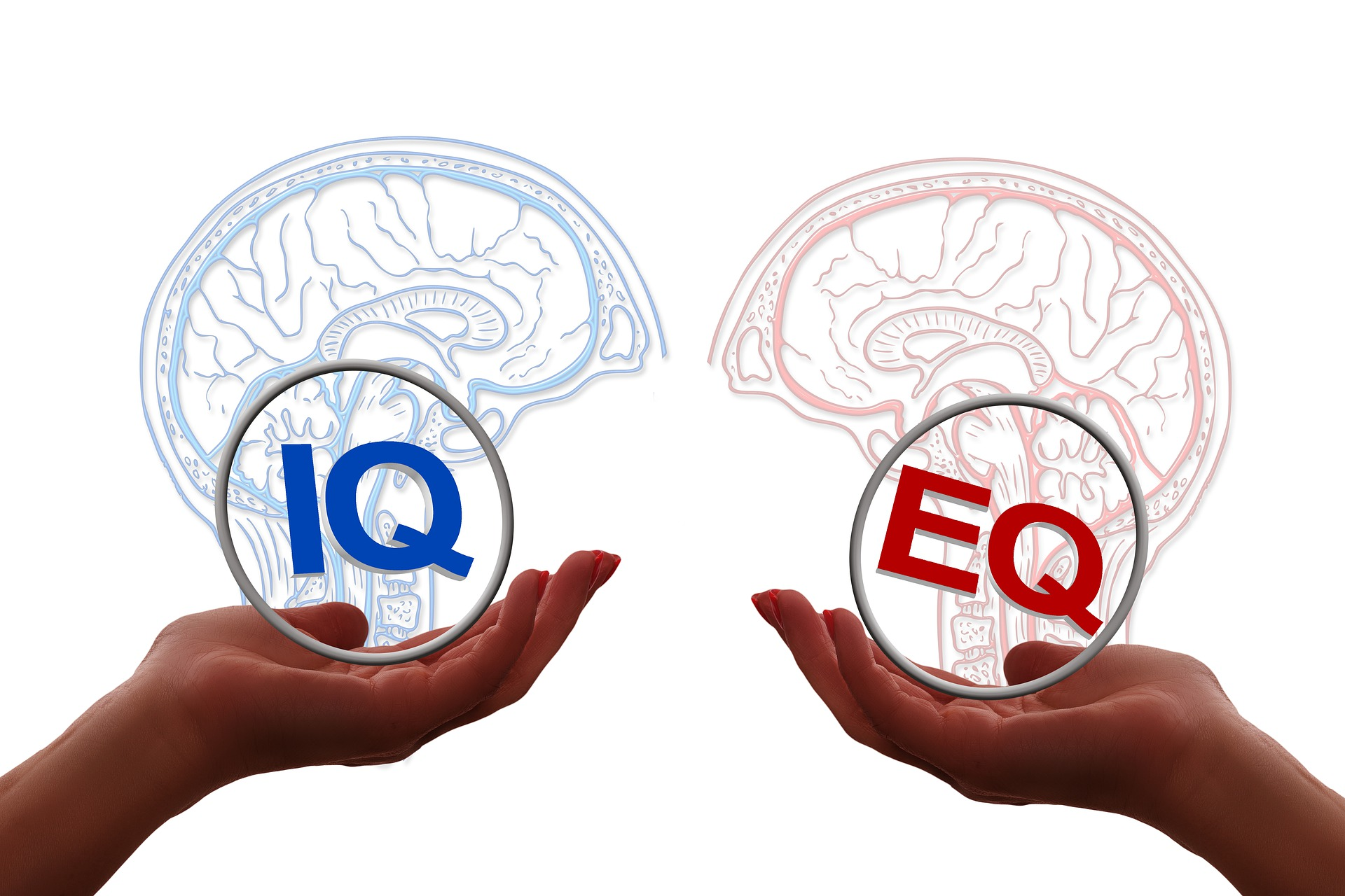 Emotional Intelligence - the vital ingredient for all ages