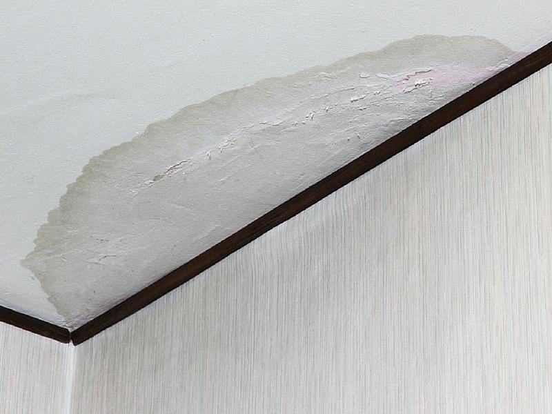 Fuite d'eau-plafond abîmé étanchéité toiture avec Radiacal Traitement en Martinique