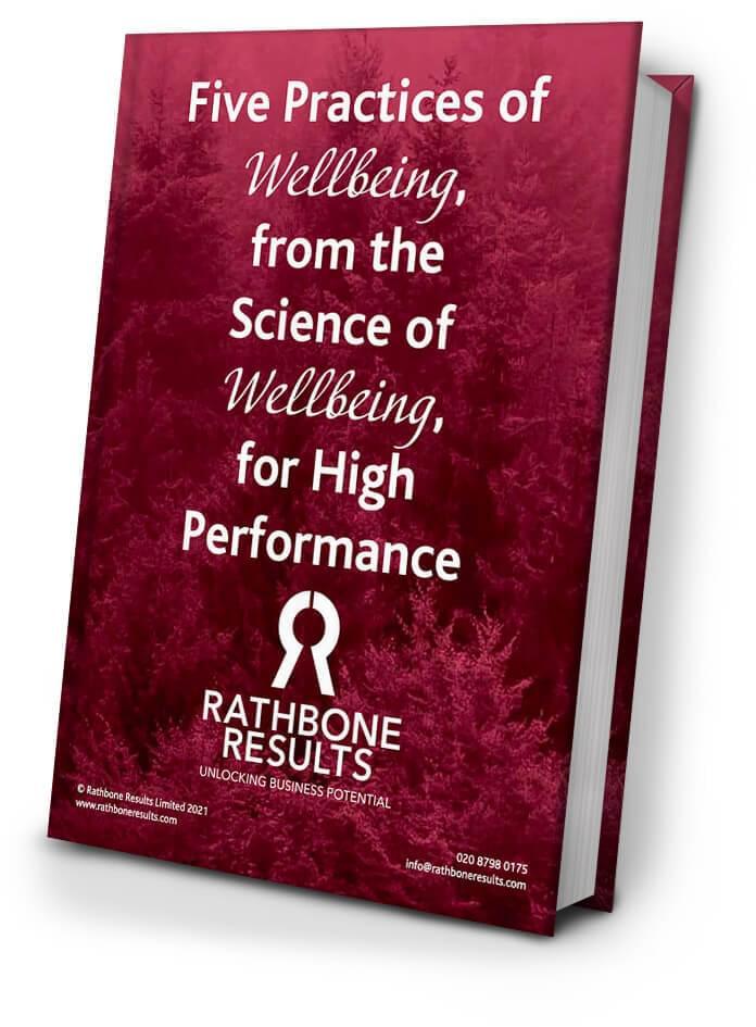 Wellbeing eBook