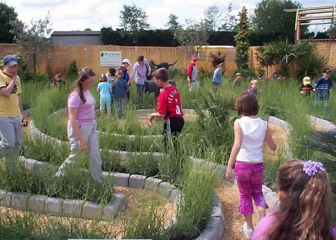 The (Lavender) Labyrinth Garden