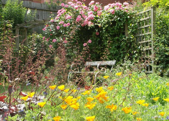 A sheltered spot beneath fragrant roses