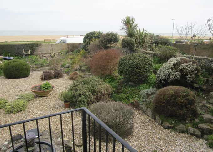 View from the terrace before, showing an overgrown rockery to the right