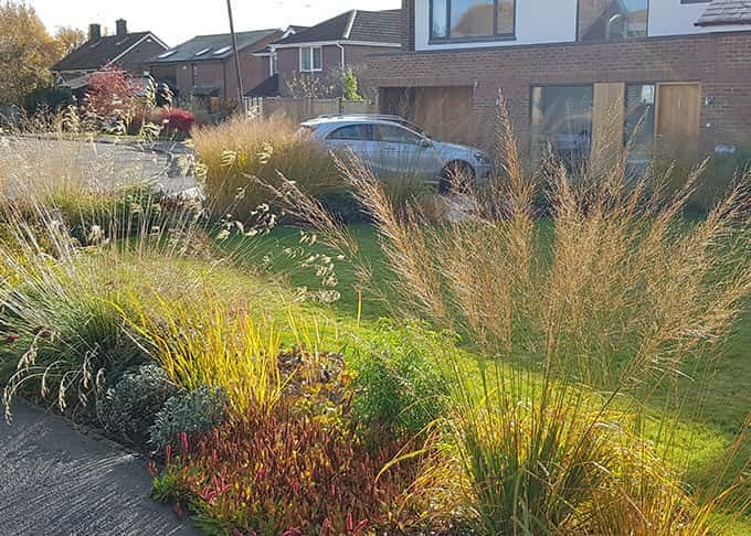Elegant grasses create a sense of enclosure with a light touch