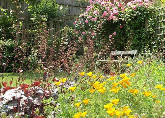 Exuberance in a cottage garden style