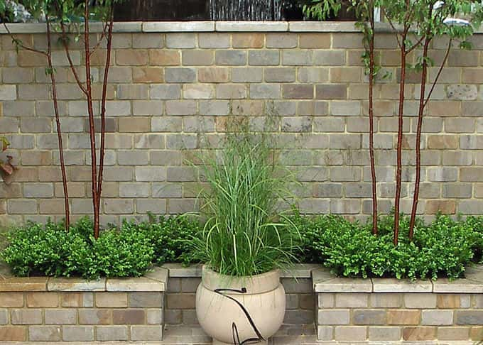 Minimalist planting can be dramatic