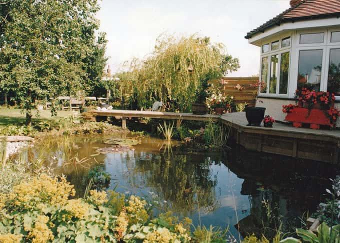 Large garden pond