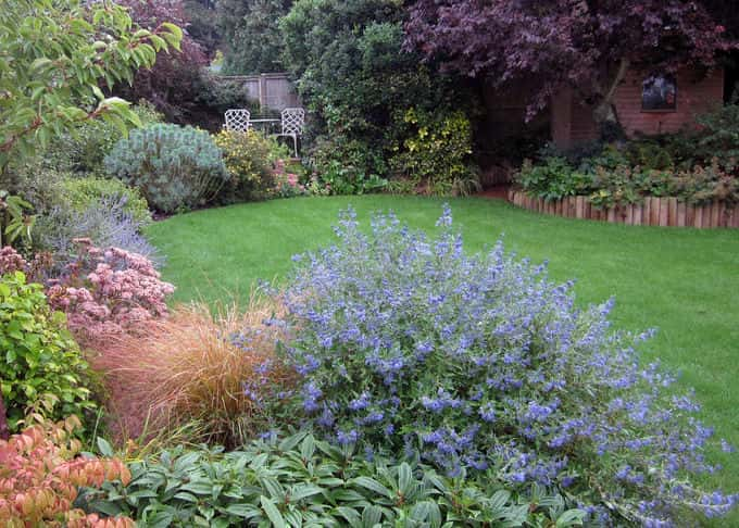 Soft colours in an informal garden