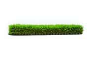 Meadow 38