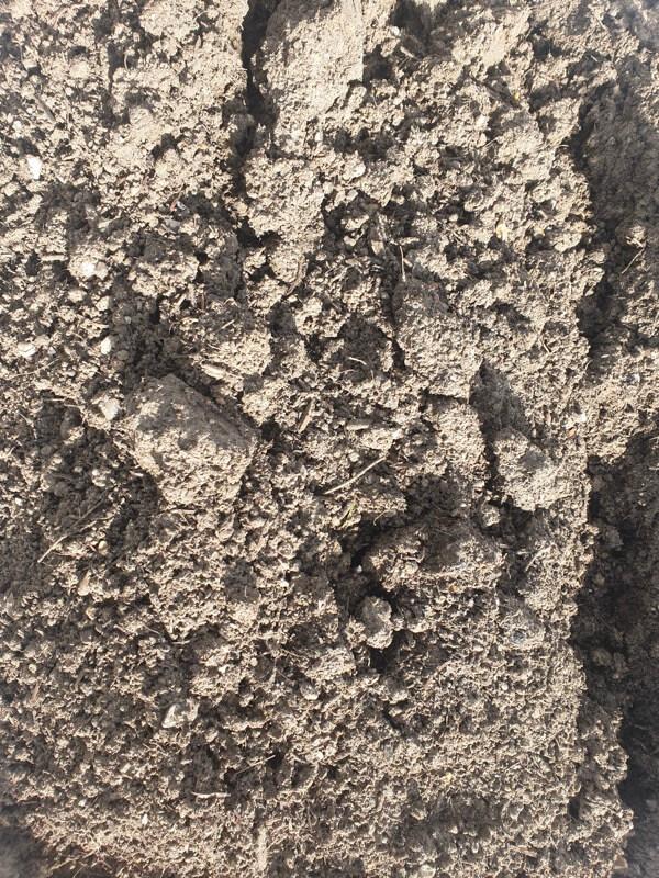 Super Soil