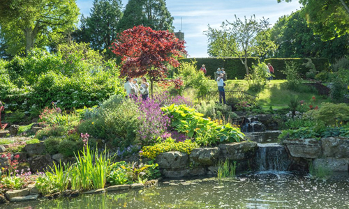 An invitation to enjoy a beautiful garden in West Sussex