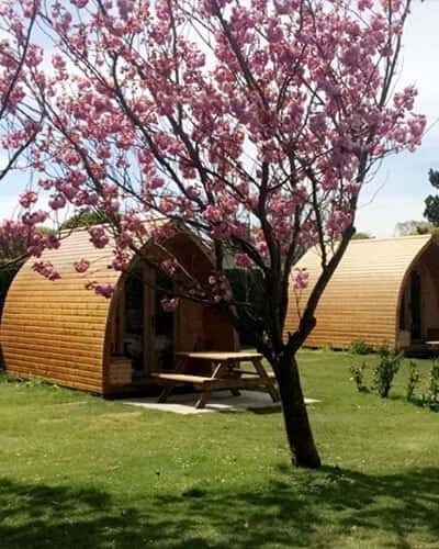 Camping Pods Image 01