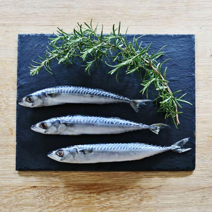 Nutriment - Fresh Whole Mackerel - 1kg