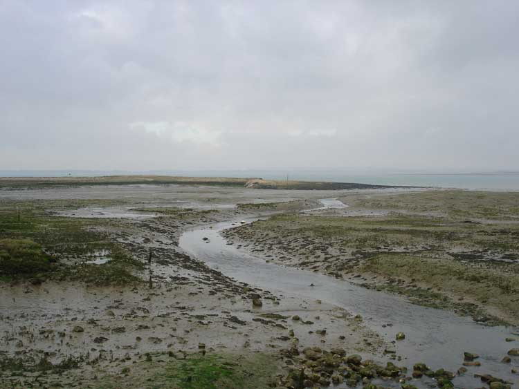 West Wittering Image 04