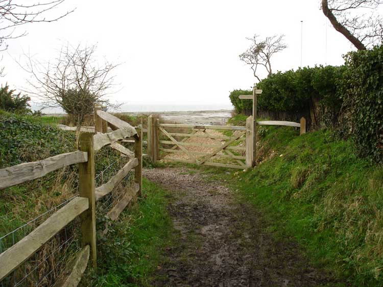 West Wittering Image 06