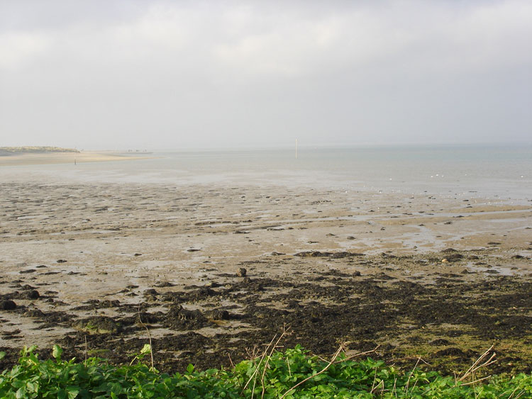 West Wittering Image 11