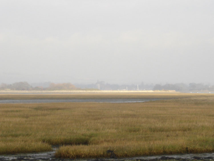 West Wittering Image 16