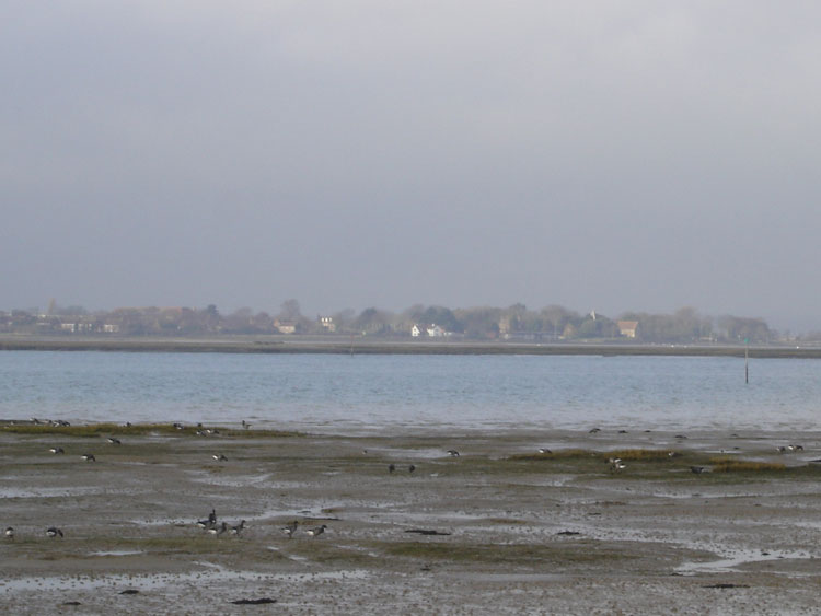 West Wittering Image 17