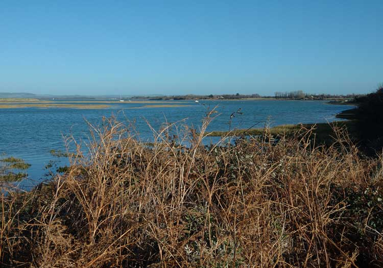 West Wittering Image 41