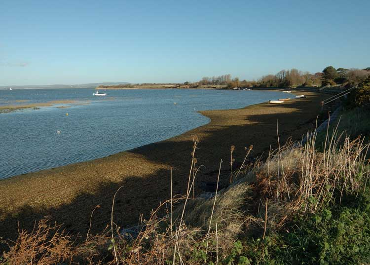 West Wittering Image 42