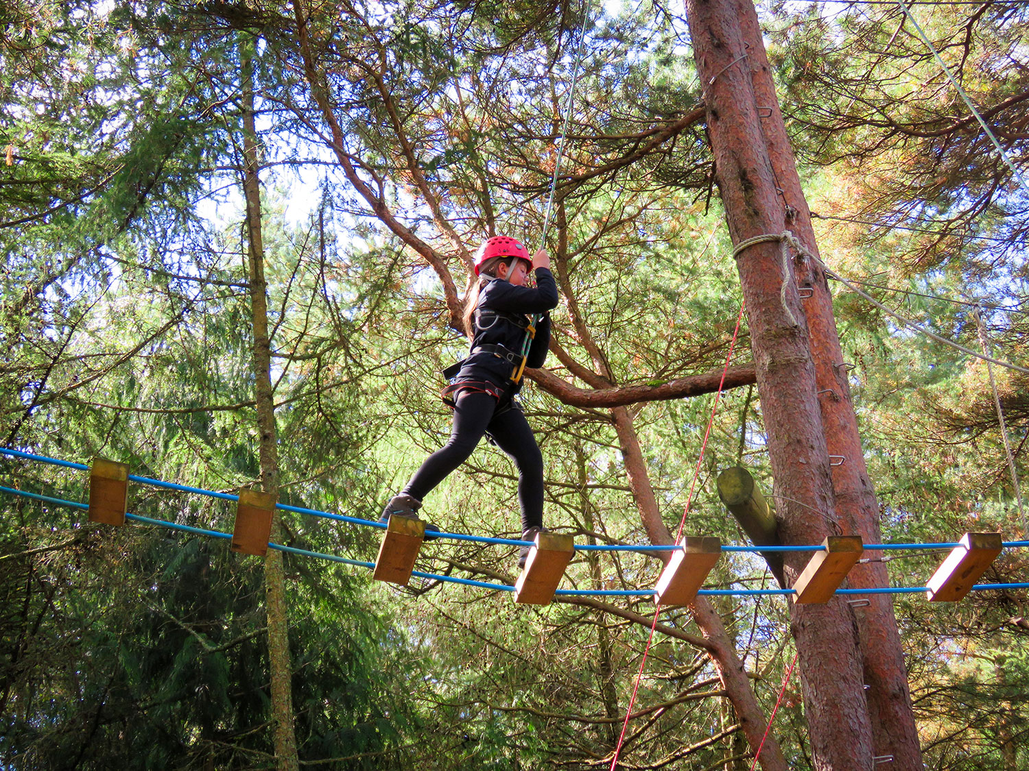 a-young-girl-enjoying-family-days-out-on-the-high-ropes-and-more-things-to-do-with-kids-in-the-new-forest