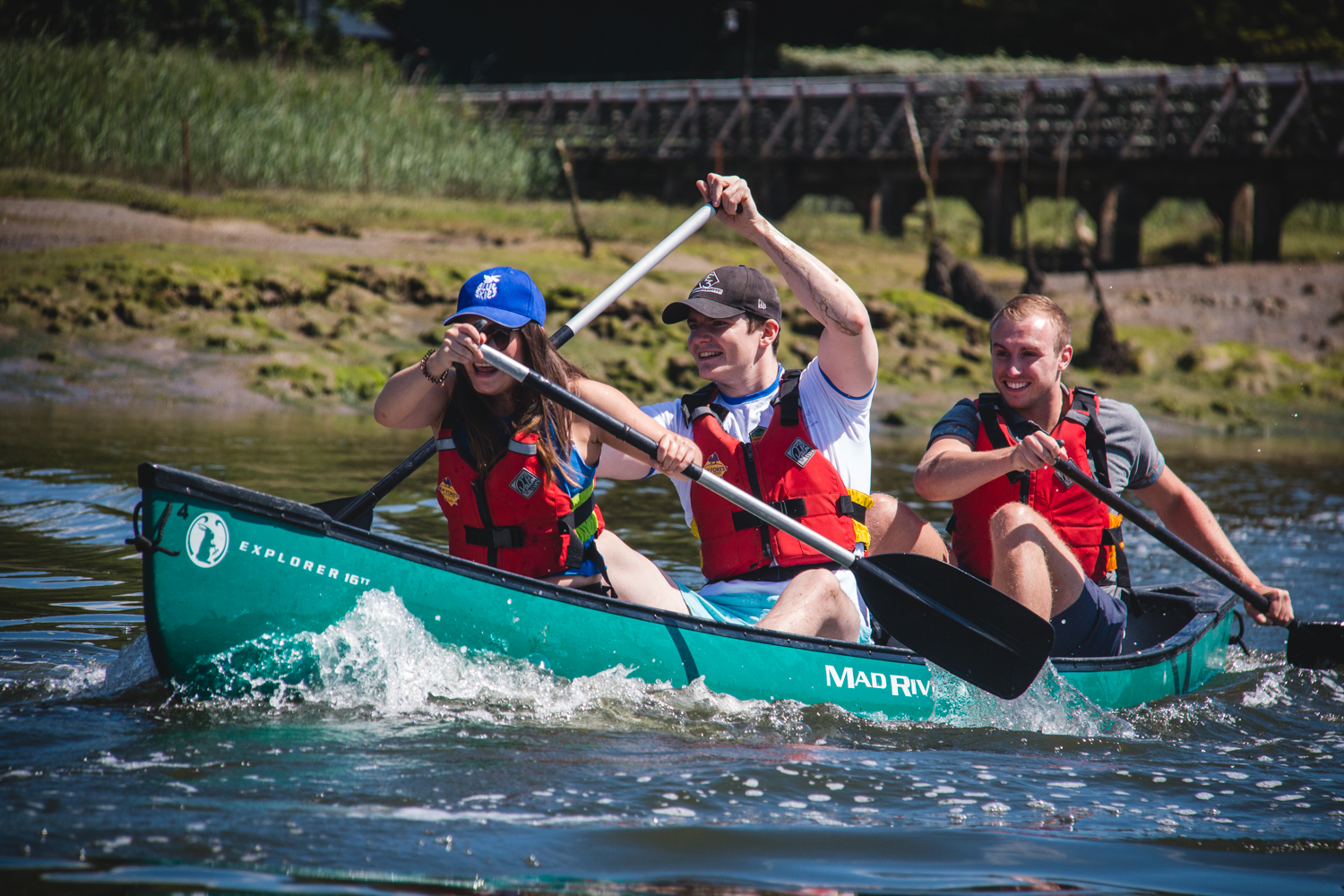 A group of colleagues canoeing on the Beaulieu River as part of a team building day