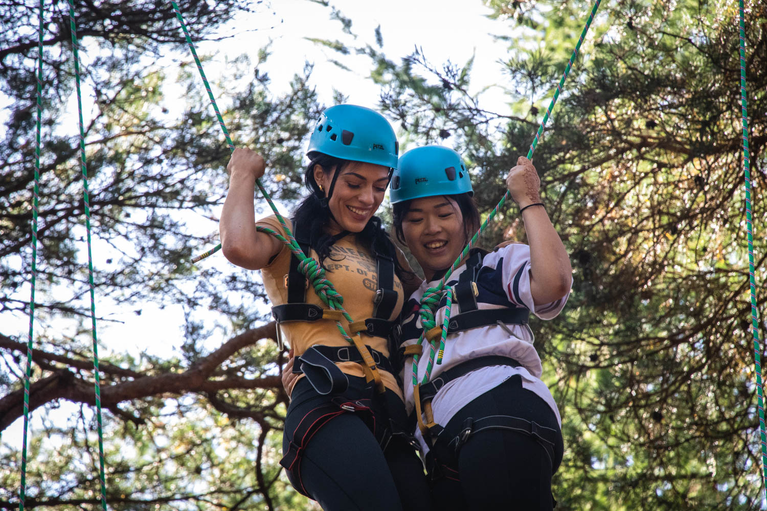 Private activities - friends on the high ropes