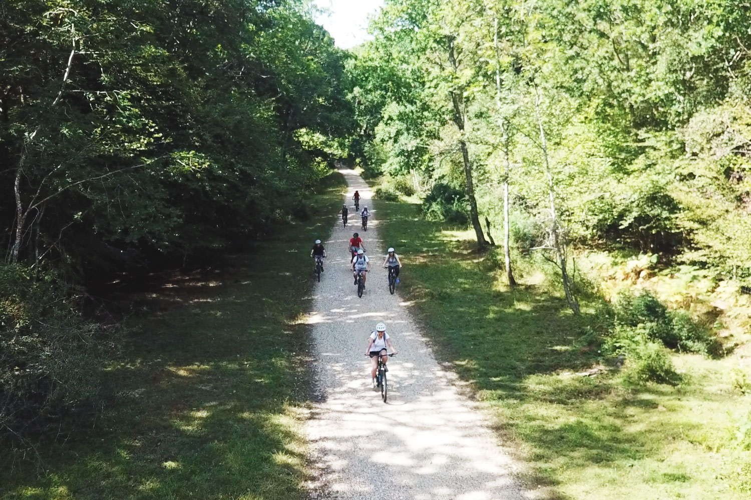 A group of friends enjoying New Forest bike hire.