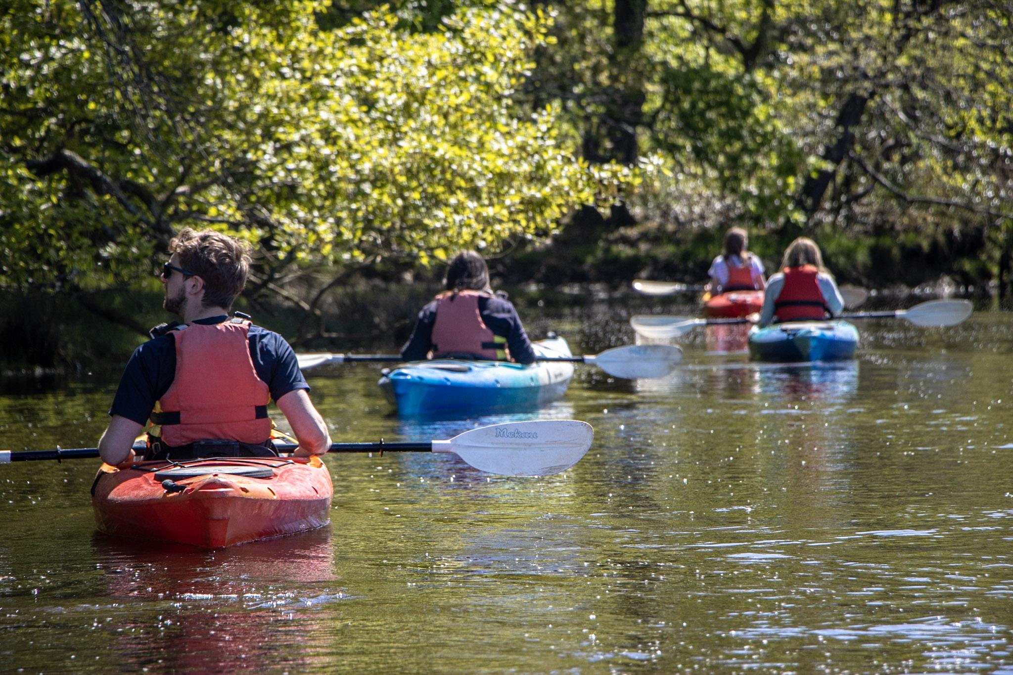 Kayaking Articles
