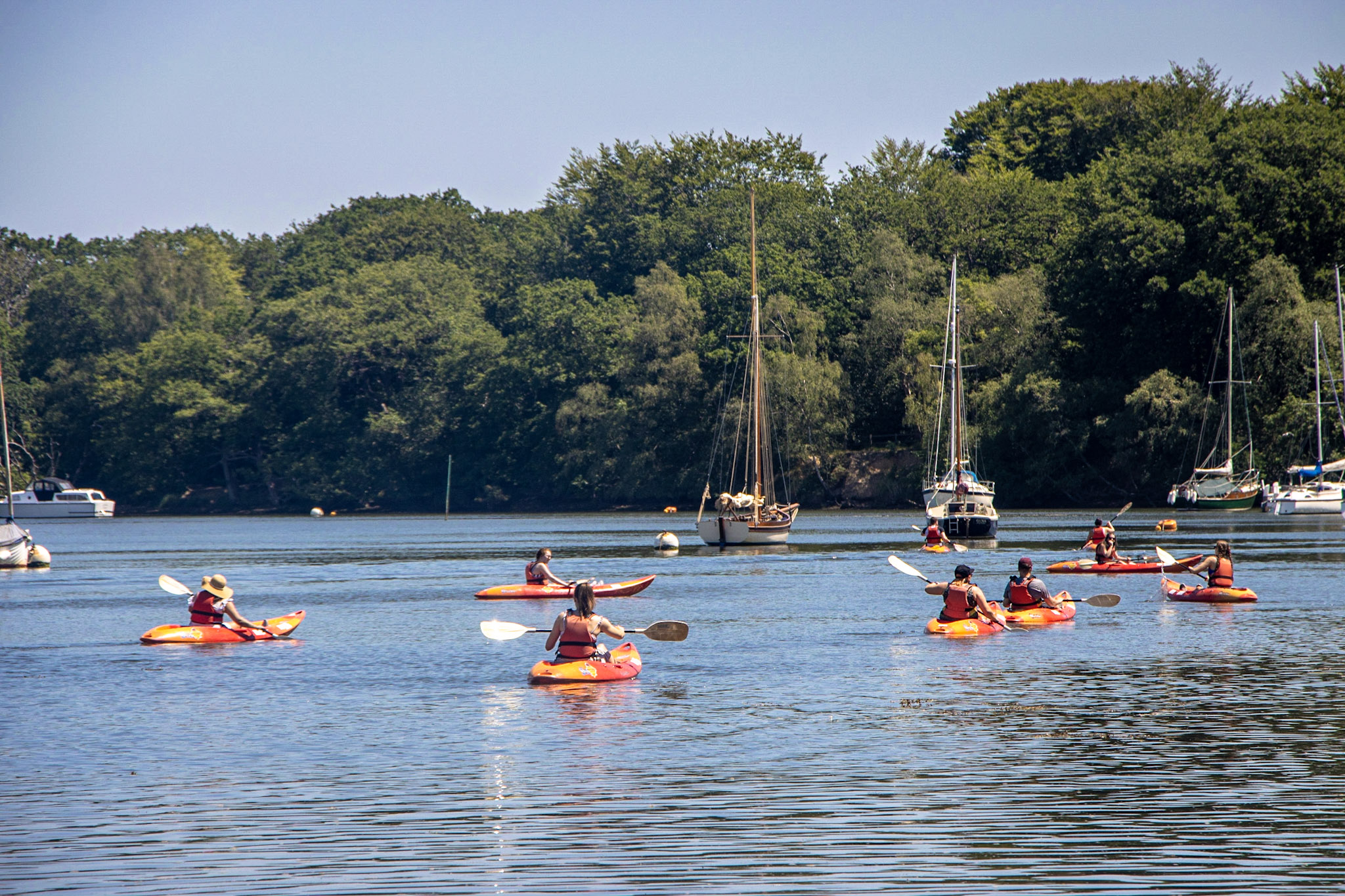 Your Kayaking Questions, Answered