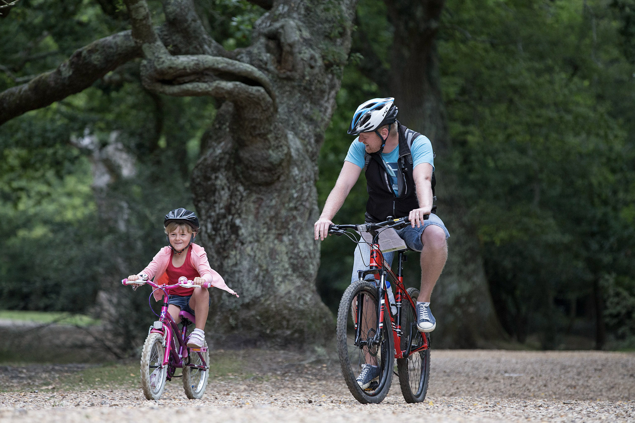 Your Cycle Hire Questions, Answered
