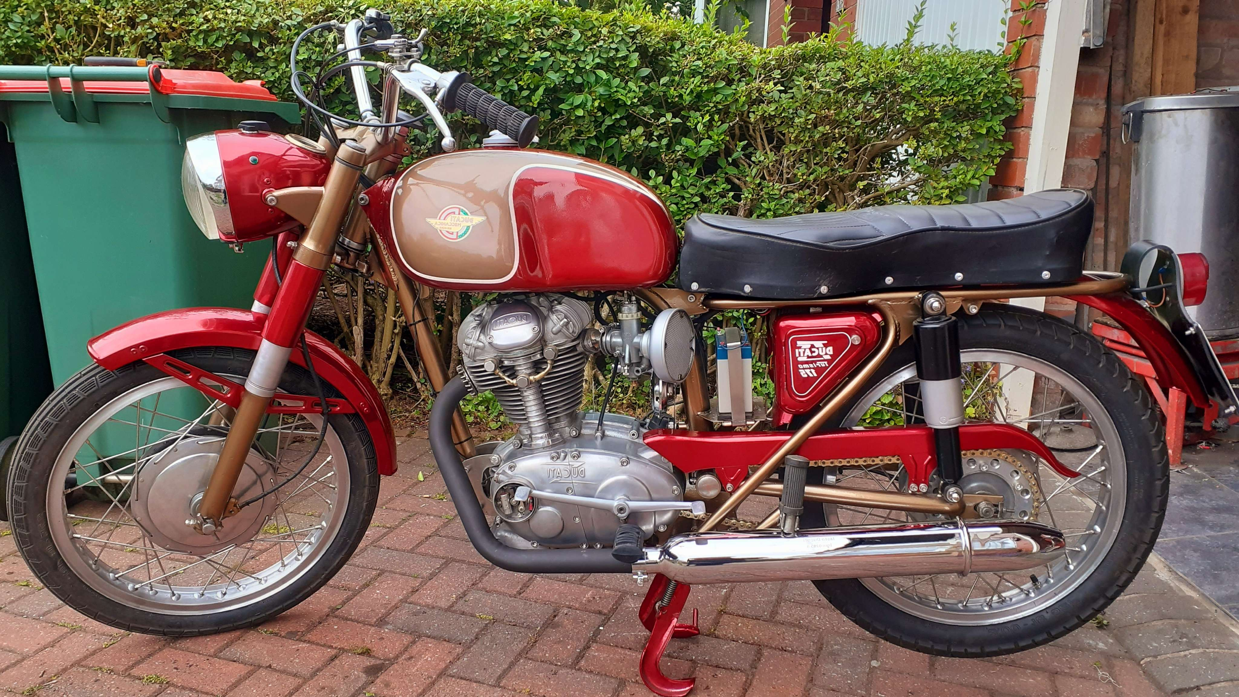 Ducati TS 175 1