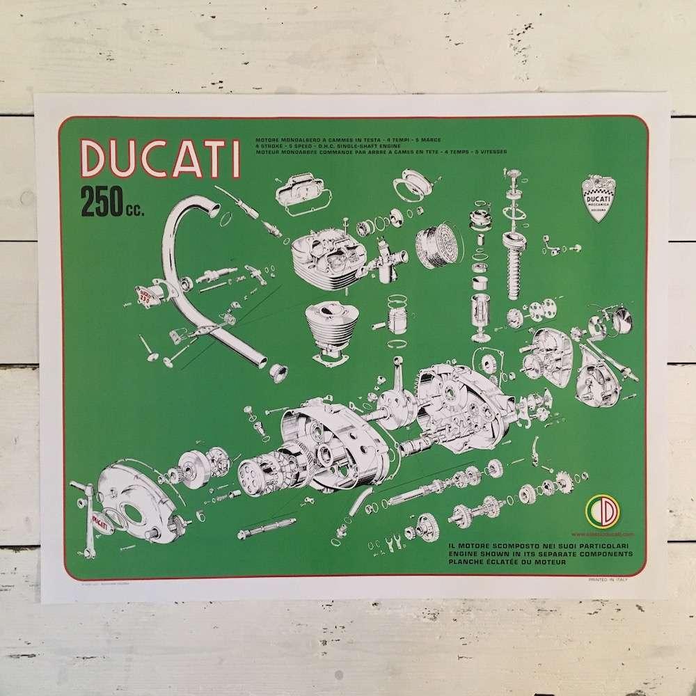 Ducati 250 narrow case engine poster