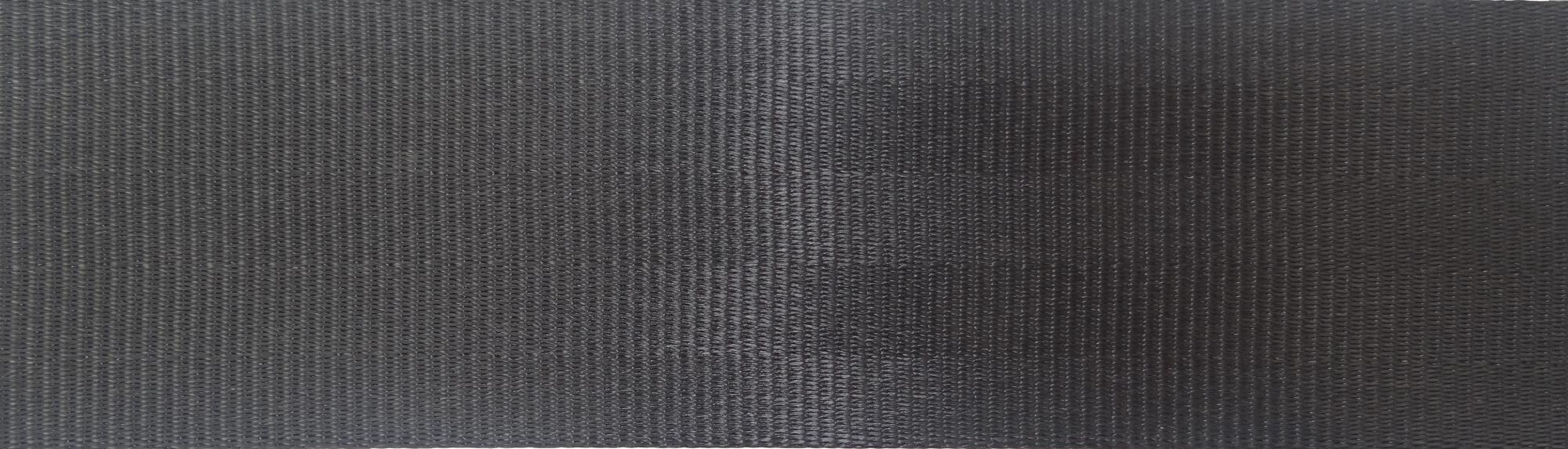 5 Panel Black (Ecotech)