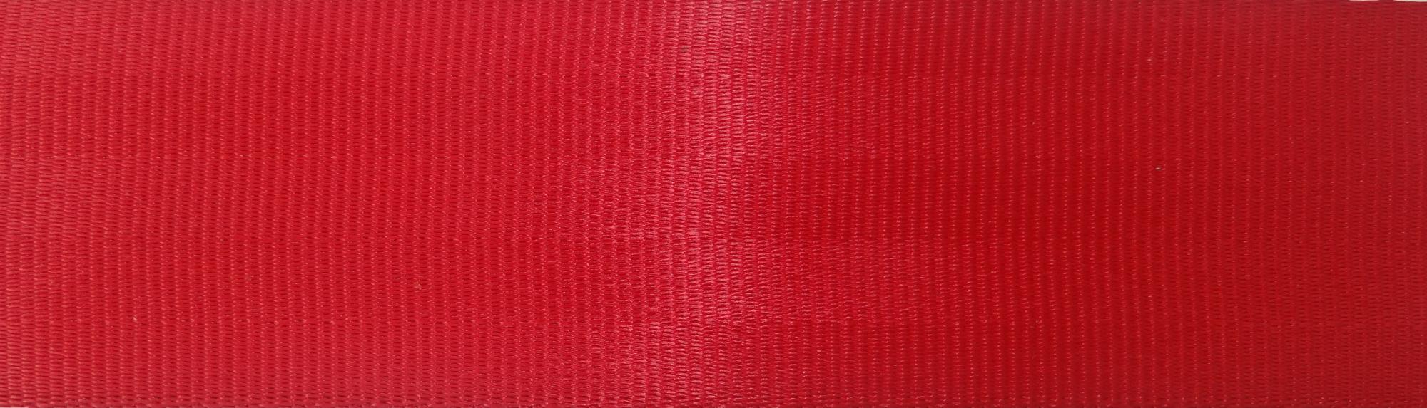 5 Panel Red (Ecotech)