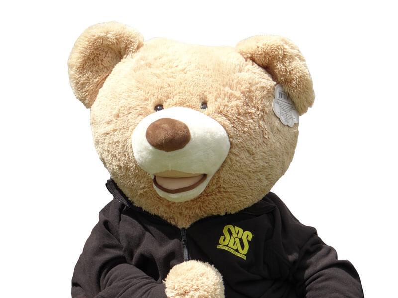 SBS bear