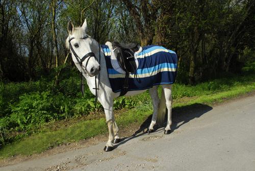 Fleece 3/4 Ride-On Rug