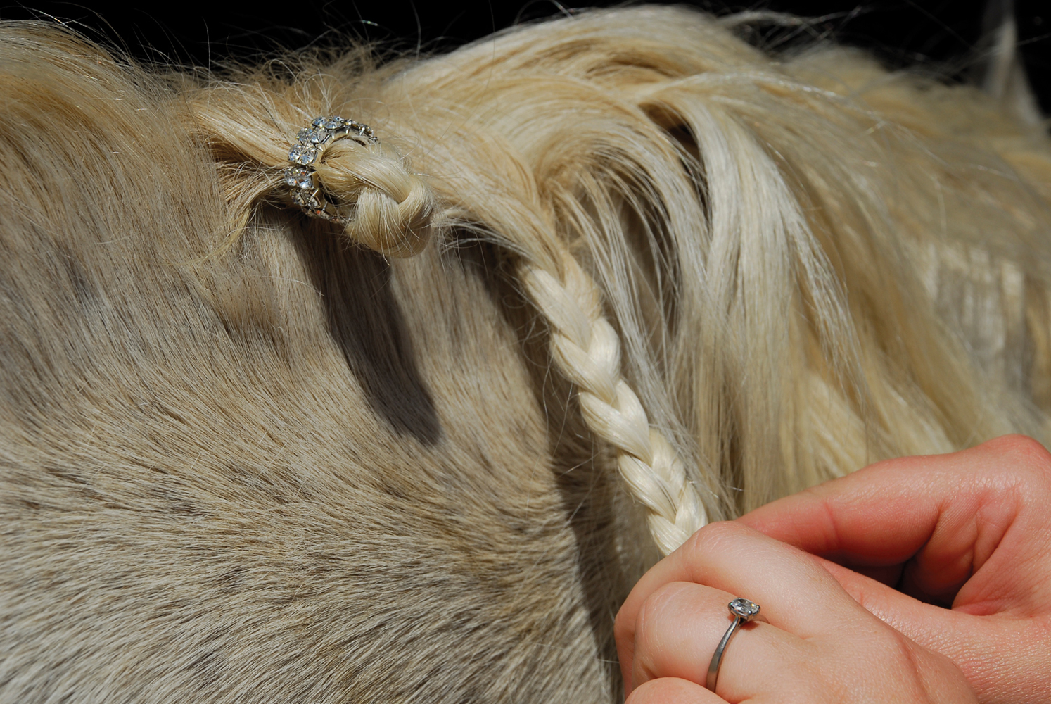 Double Row Clear Crystal Plaiting Bands - Pack of 20