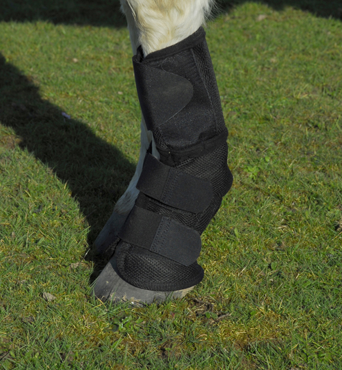 Fly-Free Summer Mesh Boots-Pair