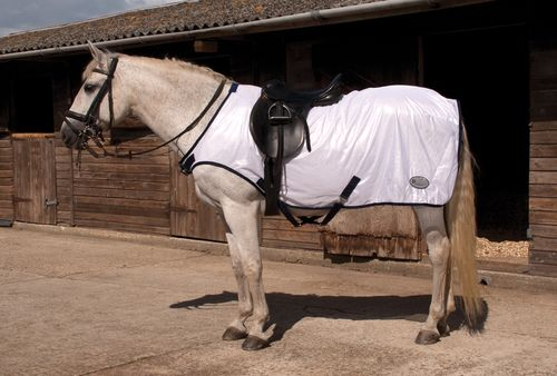 Ride On Fly Rug