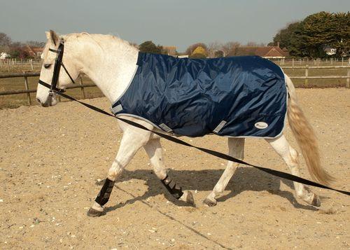 Horse Walker Lunge Rug