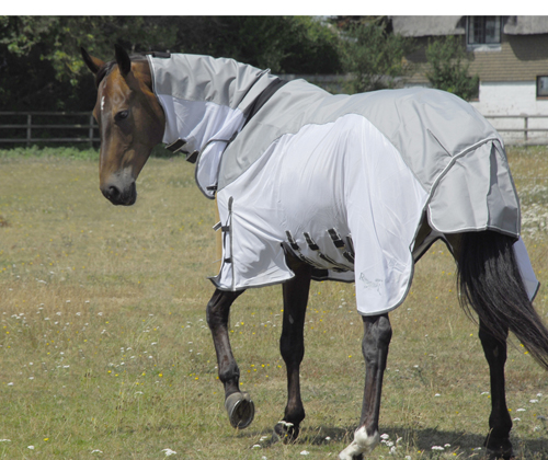 Zambia Full Neck Outdoor/Fly Rug Sheet With Waterproof Topline And Side Skirts
