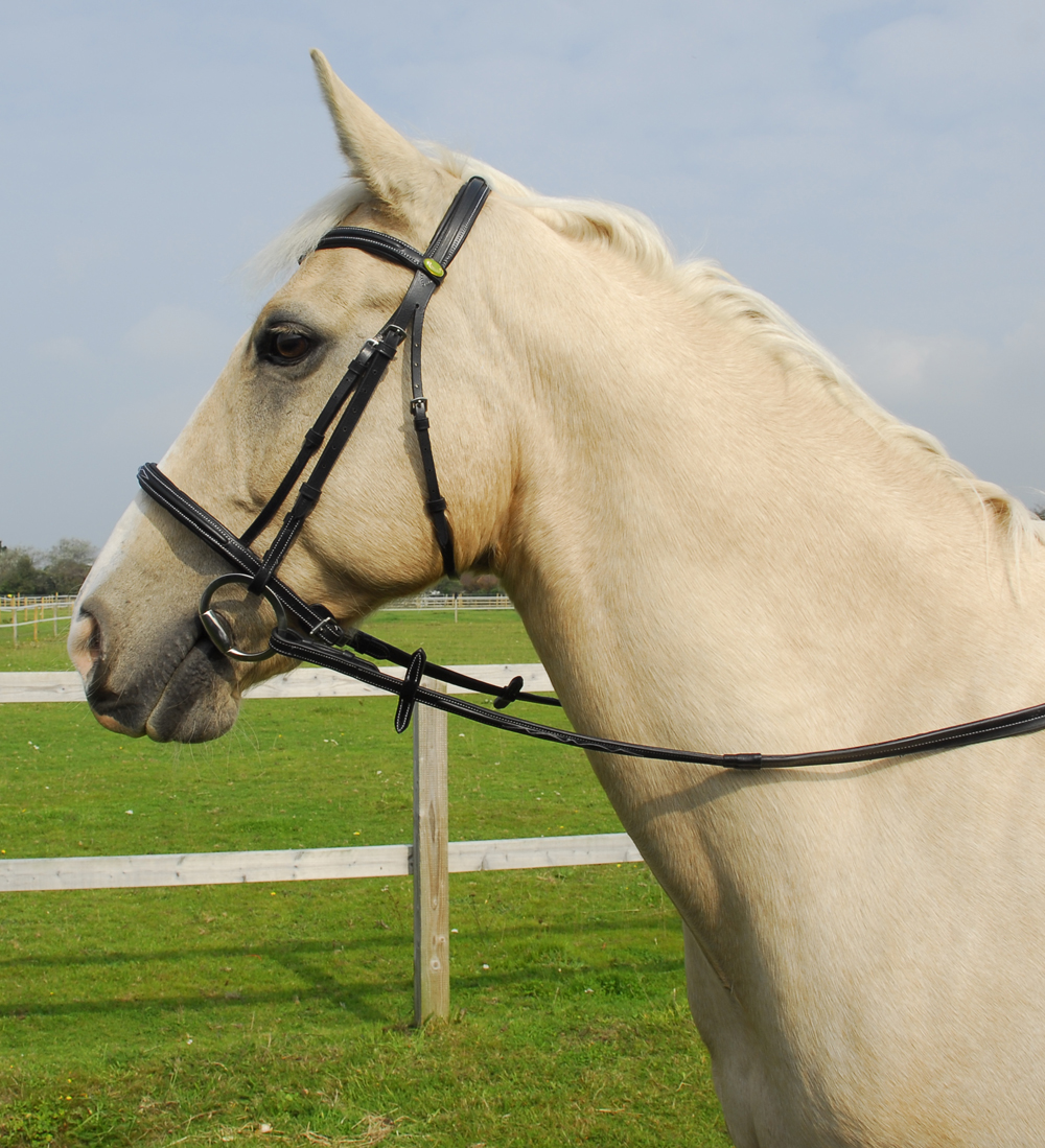 Elegance Cavesson Bridle With Reins