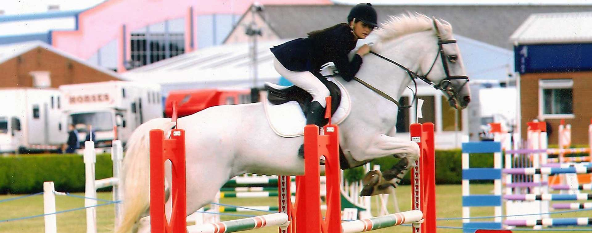 Sport Horse Sales
