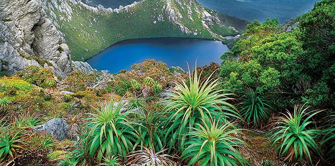 Séjour linguistique en Australie   Centre de Tasmanie UTAS   AustralieMag