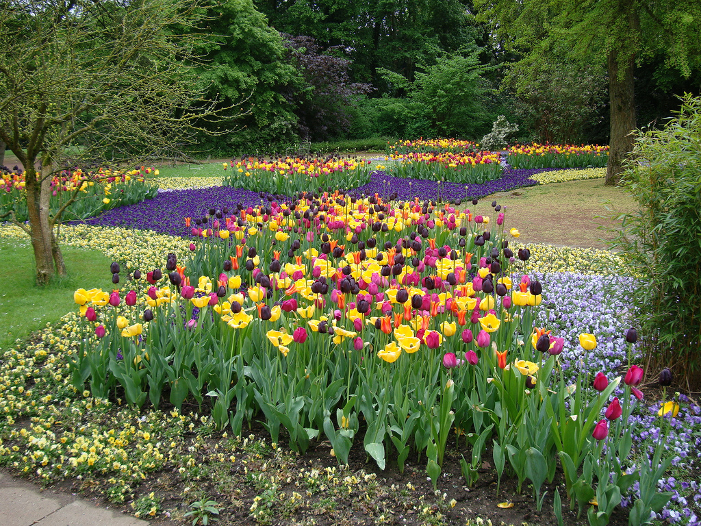 Create Focus On Fabulous Flowerbeds With UK Gravels