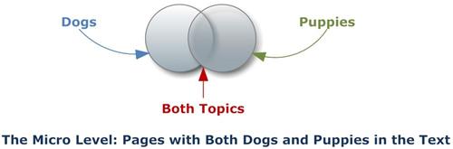 Keyword Theme Research