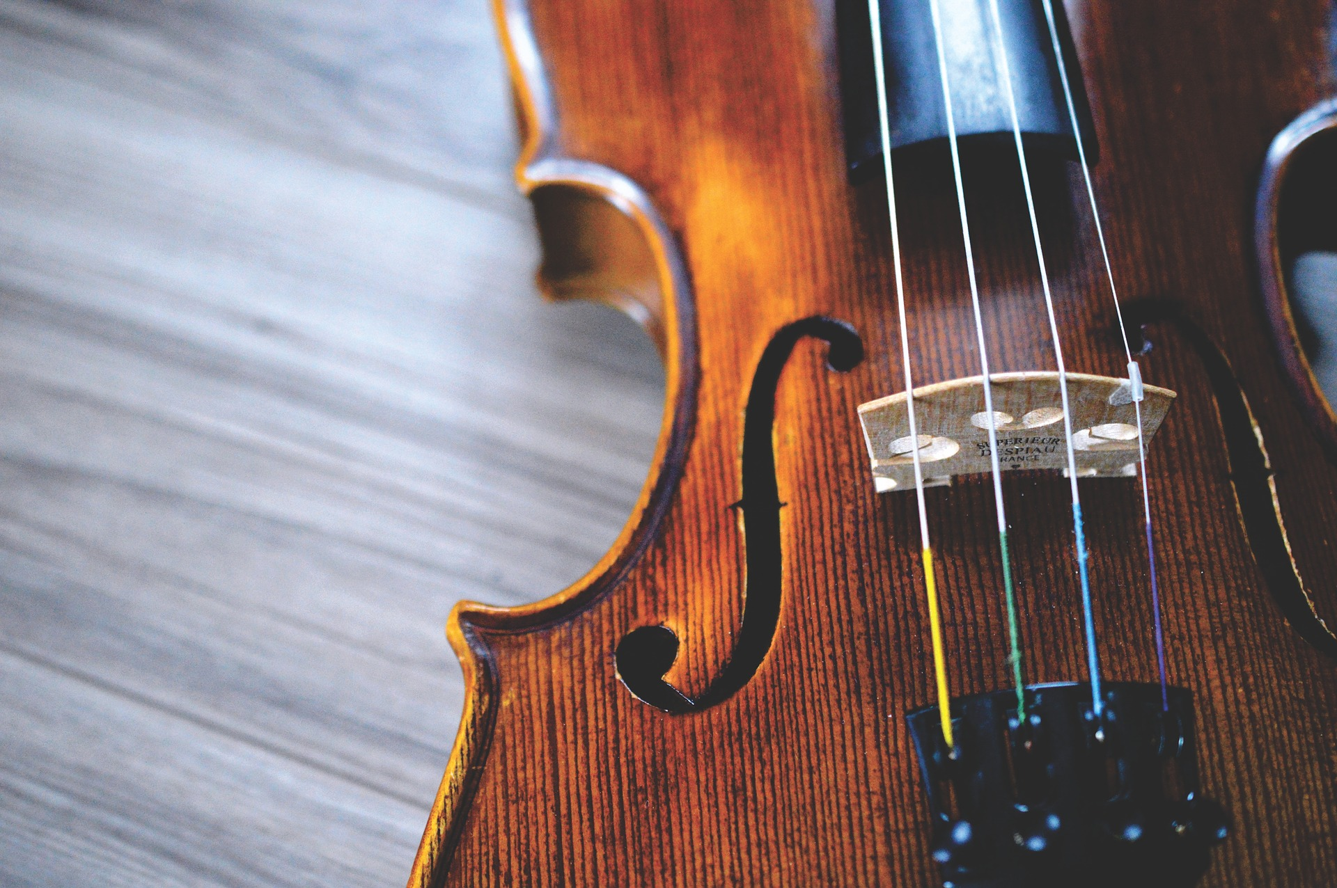 Picture of a Treated Violin