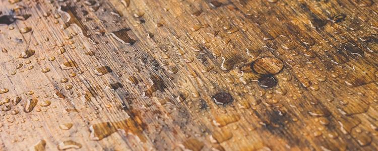 Picture of Wet Treated Wood