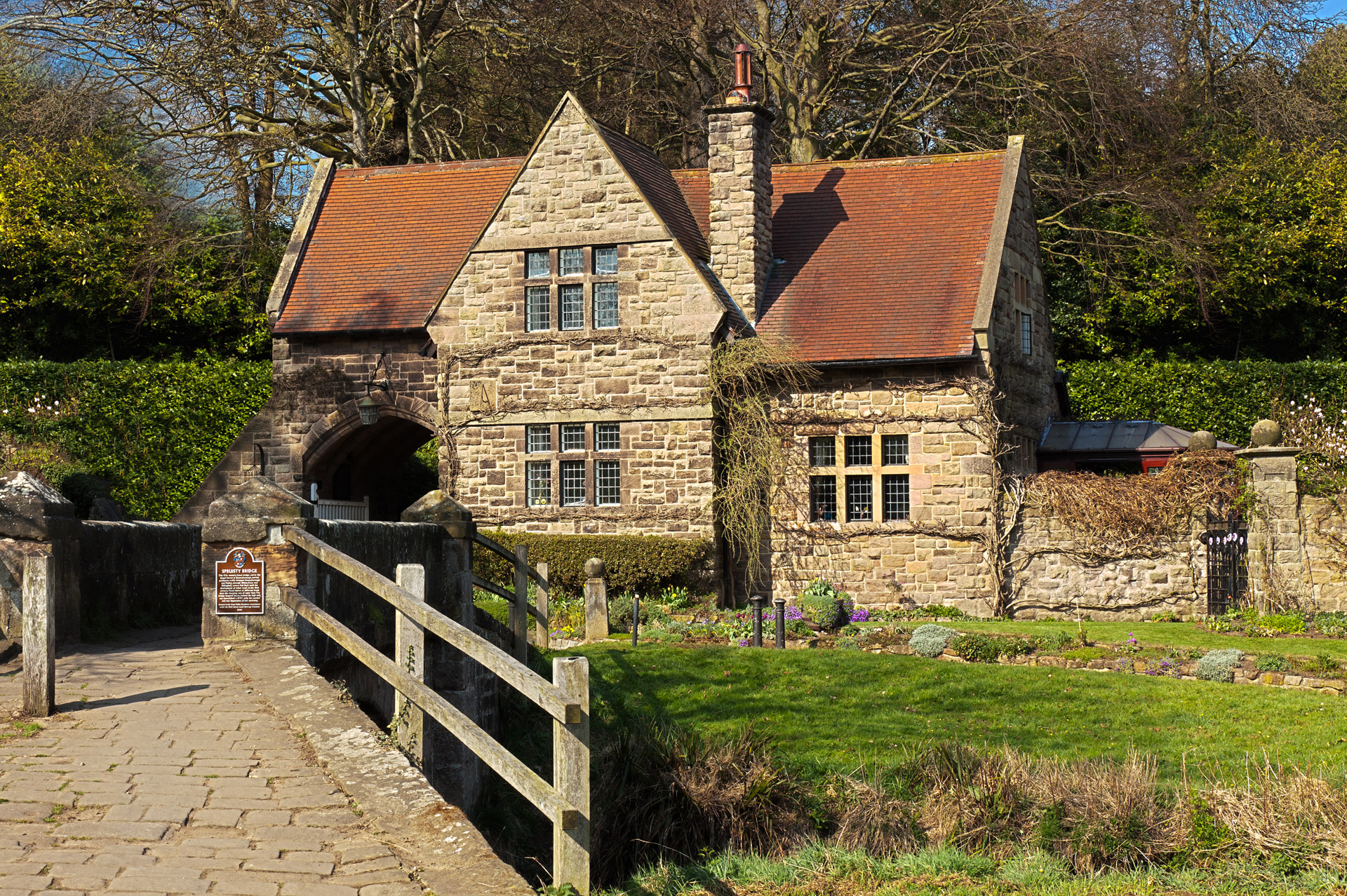 timber treatment in old houses