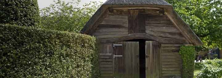 timber treatment, woodworm treatment specialists